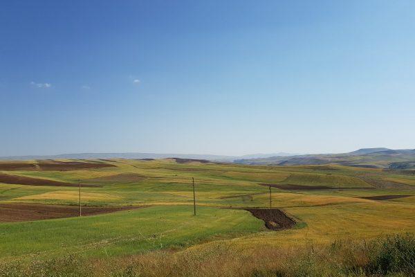 Farmlands-of-iran