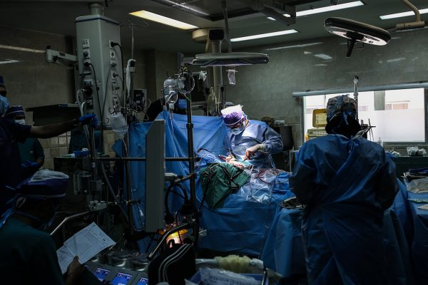 heat-transplant-syi-8