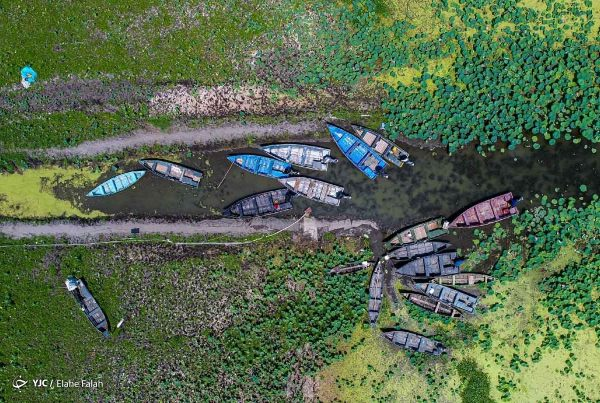 iran-wetland-pollution-4