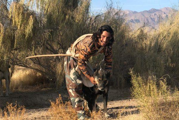 shepherd-iran-syi