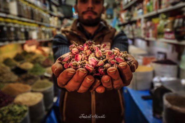 syi-blog-Farhad-Ahmadi-1