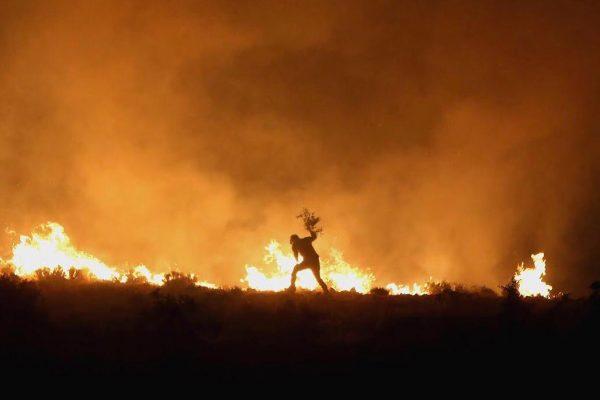 zagros-wildfire-syi-1