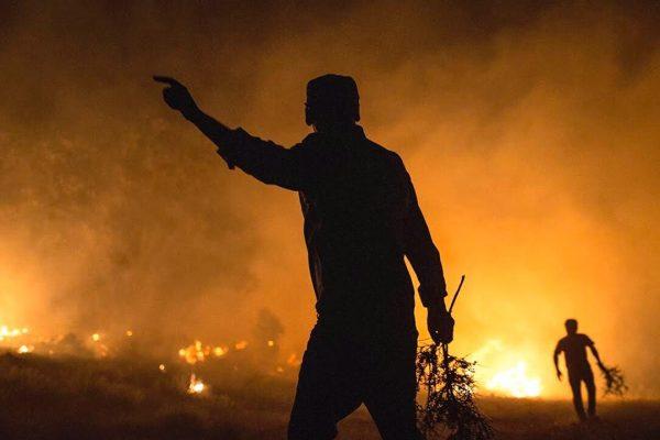 zagros-wildfire-syi-2