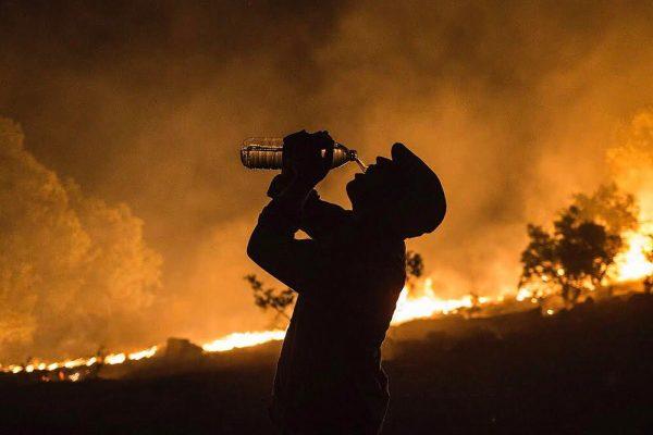 zagros-wildfire-syi-3