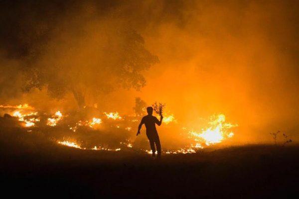 zagros-wildfire-syi-4